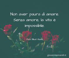 Non aver paura di amare. Senza amore, la vita è impossibile. (Tich Nhat Hanh)