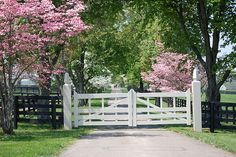 front gate  flowering with trees