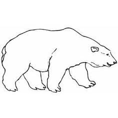 google polar bear coloring pages-#39