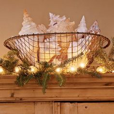 Shells in Wire Basket. Add Greenery and Lights = instant Coastal Christmas Decor: http://www.completely-coastal.com/2012/11/coastal-tidings-beachy-Christmas-collection-Eastern-Accents.html