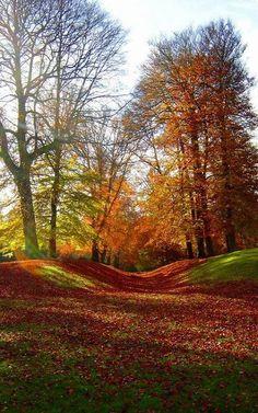Autumn in Hellerup, Denmark