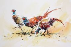 Autumn Pheasants Watercolour and ink, 46.5 x 66 cms (Jake Winkle)