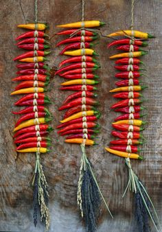 Would love to learn how to hang my chili peppers like this. Spicy Recipes, Mexican Food Recipes, Drink Recipes, Martine Fallon, Dried Peppers, Cuisine Diverse, Hottest Chili Pepper, Some Like It Hot, Spices And Herbs