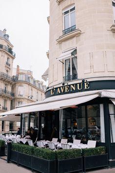 Restaurant L´Avenue,. paris, http://www.avenue-restaurant.com