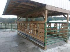 hay feeder | RicelandMeadows Cow Feeder, Feeder Cattle, Horse Feeder, Rinder Stall, Round Bale Feeder, Cattle Corrals, Cattle Barn, Miniature Cows, Horse Barn Plans