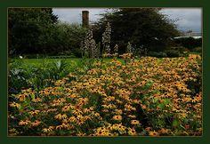Kew Gardens, London ~
