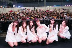 Apink at KCON JAPAN