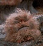 Fizgig!!! My favorite part of the movie!