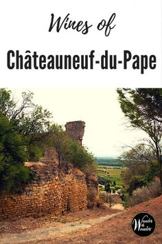 We drove through a landscape covered in vineyards to the ruins of the château. Châteauneuf-du-Pape in France is the holy grail of red wine regions. Visit France, South Of France, Wine Making Process, Chateauneuf Du Pape, Travel Inspiration, Travel Ideas, World Recipes, Wine Country, Wine Tasting