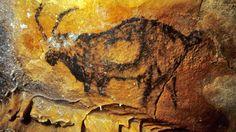 magnifique bouquetin - grotte COSQUER Art Pariétal, Art Antique, Art Premier, Naive Art, Tribal Art, Ancient Art, Rock Art, Old World, Archaeology