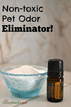 Use this Non-toxic Pet Odor Eliminator to get rid of pet smells and replace them with the scent of wild orange. Safe to use around both dogs and cats.