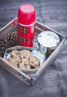 so pretty, snow session  cozy blankets, sweaters, chocolate chip cookies in a tin, marshmallows, and a thermos of hot chocolate!