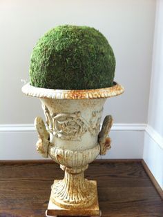Preserved moss topiary in beautiful urn.