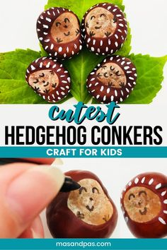 Help your toddler make the cutest hedgehog family with this simple tutorial. It's as easy as collecting conkers on your next autumn outing. Use sharpies and paints to make a loveable pet hedgehog for your preschooler. Fall Crafts For Toddlers, Diy Crafts For Kids Easy, Paper Plate Crafts For Kids, Animal Crafts For Kids, Easy Arts And Crafts, Craft Activities For Kids, Toddler Crafts, Activity Ideas, Kid Crafts