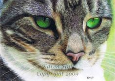 Information on Drafting film. This is a beautifully rendered drawing (coloured pencil) on drafting film by Artist Karen Hull. I had to post it as it is a simply magnificent pet portrait. Look at those eyes and that amazing detail:)