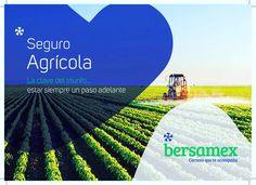En #Bersamex conocemos los #Riesgos a los que estas expuesto, por lo que a travez de un #SeguroAgrícola protegeremos tu #Inversión con coberturas que se adaptan a tus necesidades de #Protección.  #AsegúrateBien #SeguroAgropecuario