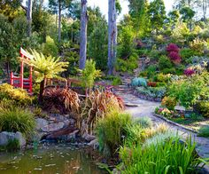 Former ballerina Jessie Vonk has created a wonderland of Australian natives in her Tasmanian garden, as a tribute to her late husband.