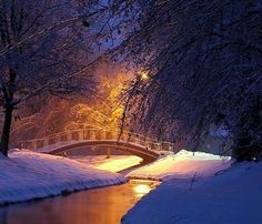 """~ """"A Stunning Winter's Dream"""" ~ Oh to bundle up and take a long walk, crossing this bridge in Winter's Wonderland ~ ♥ :)  https://www.facebook.com/photo.php?fbid=402385099837974=a.352643578145460.81730.352631861479965=1"""
