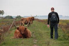 BLOG: 'Verdwaald in Tiengemeten' (verslag van onze wandeling op 2 september 2012) #wandelen #hiking