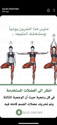 Full Body Workout Program, Full Body Gym Workout, Gym Workout Tips, Fitness Workout For Women, At Home Workout Plan, Workout Videos, Workout Programs, At Home Workouts, Sports Physical Therapy