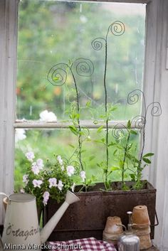DIY GARDEN :: Window box w/ homemade curly stakes made from wire for your creeping plants to grow up!