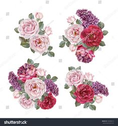 Bouquet of roses and lilac. Hand drawn watercolor flowers set