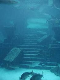scuba diving at the site of the lost city of Atlantis
