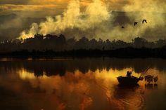 Light and Life ..... by Anuchit Sundarakiti on 500px