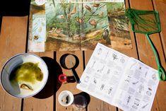Stromová klimatizace | Učíme venku Tableware, Dinnerware, Tablewares, Dishes, Place Settings