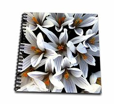 Costasonlineshop Photography Flowers  Beautiful White Wedding Flowers  Drawing Book 8 x 8 inch db_236405_1 ** You can find more details by visiting the image link.Note:It is affiliate link to Amazon.