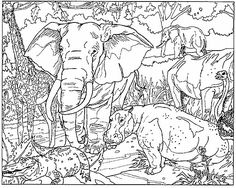 african coloring pages african colouring sheets coloring university