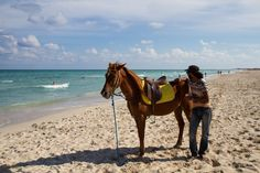Photo by Ivana Piskáčková Horse Tack, Mammals, Sky, Horses, Vacation, Beach, Water, Heaven, Water Water