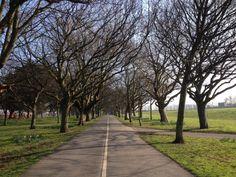 Spring morning run Space Place, Morning Running, Sidewalk, Country Roads, Spaces, Spring, Side Walkway, Walkway, Walkways