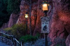 Remnants of the Country Bear Jamboree by Tours Departing Daily