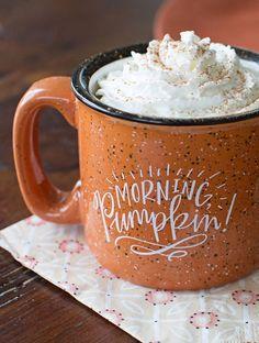 Hot chocolate with pumpkin spiced cream - yum!