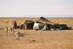 nomaden woestijn sahara marokko
