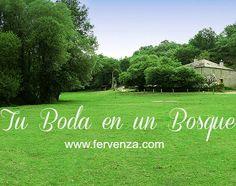 Tu boda en un bosque en Casa Grande da Fervenza de Lugo (Galicia). fervenza.com