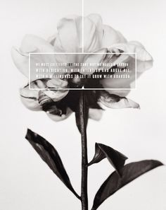 .>>card inspiration: black and white photo, black velum (rubbed with charcoal/paint) and white text