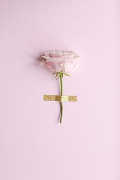 Pink rose / Gold tape
