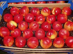 Nectarinas de Huelva