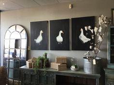 Local ducks addressi