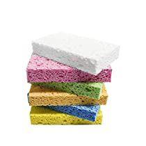 Option for Sponges; week 3