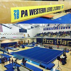#PA Level 3 Western State Championships, hosted by #GymDandys! #MancinoMats #MancinoMeets