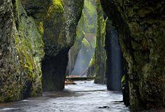 Oneonta Gorge, Oregon  Essas paredes forradas com musgo do Oneonta Gorge ficam no Columbia River Gorge, que forma um conjunto de plantas aquáticas e florestais. O fantasioso cenário parece ter saído de um livro, do qual os visitantes podem fazer parte ao caminhar pelo córrego.