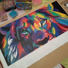 Colorful lion hama beads by annaemilia164
