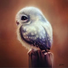 regram @arts_help Cute Owl By @artofokan _ Also check out our 2nd art featuring page @artshelp