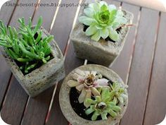 *Today I am sharing my guest post that was posted last week over at  Remodelaholic . . I made these hypertufa pots after seeing this articl...