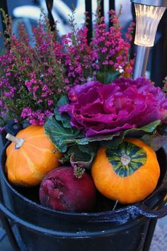 Pumpkin and cabbage flowers arrangement