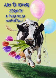 Good Morning, Album, Humor, Birthday, Poster, Blog, Pictures, Animals, Goals