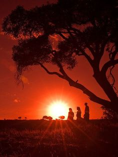 Maasai Warriors at Sunset, Masai Mara, Kenya